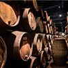 Recoletos Ortiz organiza una Jornada Técnica para las bodegas y el sector vitivinícola de Aragón