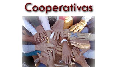 desarrollo de departamentos de seguros para cooperativas